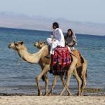 Le Sinaï